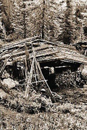 Изба Лыковых. В ней они жили тридцать два года.