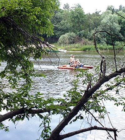 Дубовые рощи и сосновые леса на берегу реки Самары - отличное место отдыха.