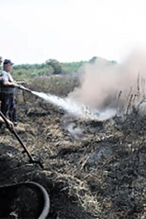 Поливание торфяников водой - малоэффективный способ тушения пожаров.