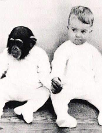 Гуа и Доналд Келлог так подружились, что ребенок стал превращаться в животное.