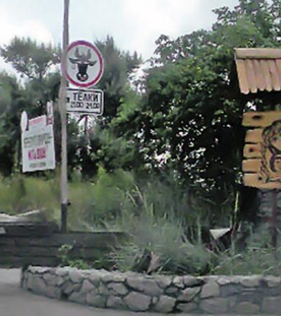 Знак «Телки на обочине» обнаружен у кафе на 238-м километре трассы Киев - Харьков. Информирует водителей о месте и времени стоянки телок.