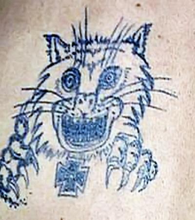 На спине у Гоши - грозный котяра, оскаливший пасть.