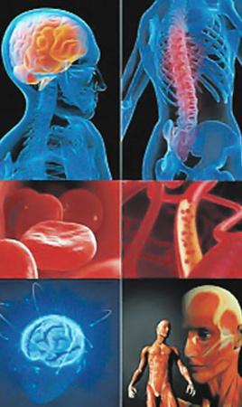 В любом месте «компьютерного» тела врачи смогут сделать виртуальный надрез и рассмотреть внутренние органы, слои кожи, мозг и т. д. Процедура занимает несколько секунд, благодаря чему медики могут быстрее поставить диагноз пациенту и раньше приступить к лечению.