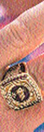 А на официальных мероприятиях Арни носит перстень губернатора (2).