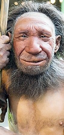 Журналисты газеты The Daily Mail полагают, что Оззи похож на этого ненандертальца, изображение которого воссоздано по обнаруженным останкам.