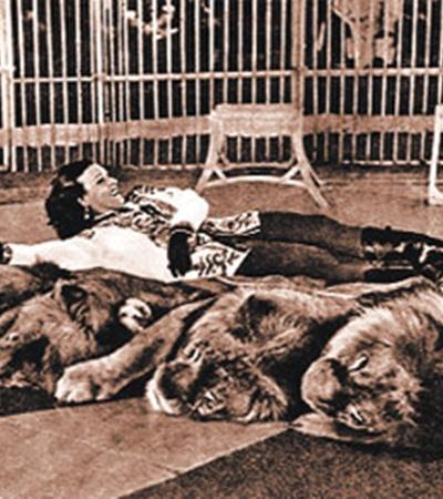 Были аттракционы, в которых вместе с Ириной Бугримовой выступали 11 львов.
