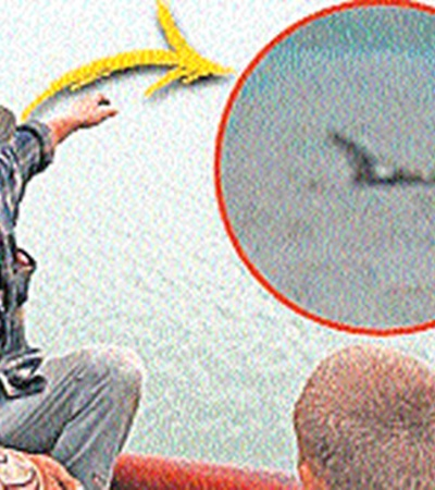 Иллюстрация из британской газеты. Объект в «линзе» выдан за чудовище озера Чаны. Выше - тот же объект. Видно, что к живности он не имеет никакого отношения.