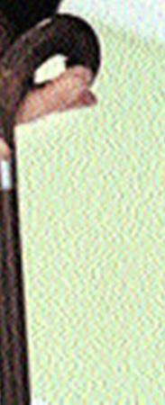 Это вторая трость Хауса. (Первая почила на съемках первой серии.) В наказание подпилена Уилсоном.