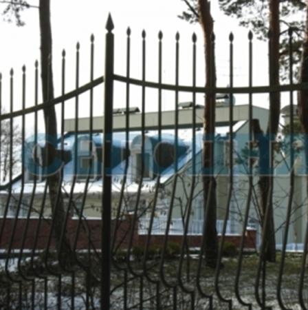 Петр Симоненко поселился в роскошном поместье под Киевом. Фото с сайта segodnya.ua.
