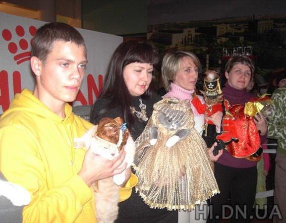 У кошек присутствовали и всевозможные аксессуары. Фото: hi.dn.ua.