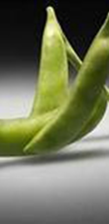 Забив в Google «что такое ГМО», вы получите такие картинки.