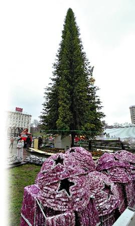 35-метровая киевская красавица уже  собрана. Осталось украсить.