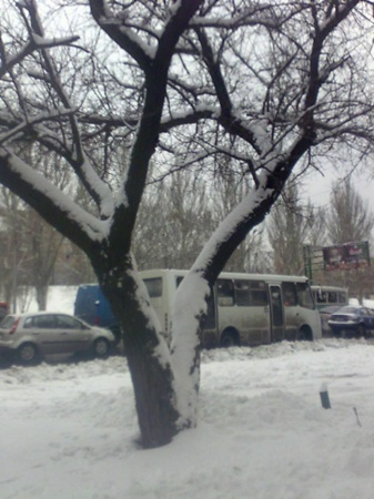 Донецк во власти стихии. Фото: Алена Финько.