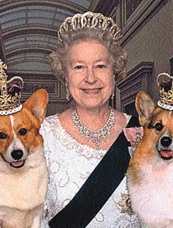 Королева Елизавета больше 60 лет держит собак породы вельш-корги.