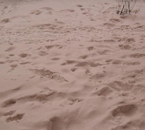 Сразу же после Нового года в Самаре выпал коричневый снег. Фото с сайта svpressa.ru.