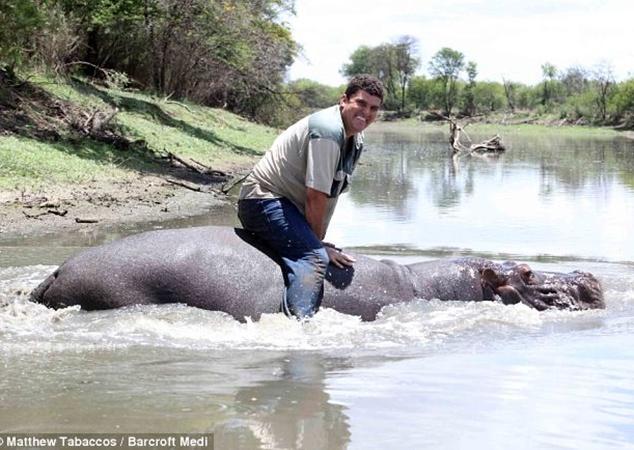 Каждое утро животное катает человека в своем озере. Фото с сайта dailymail.