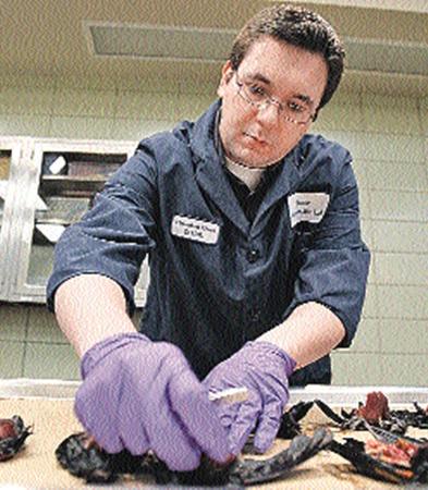 Орнитологи исследуют тушки птиц. Но пока не могут установить причины, которые довели до смерти.