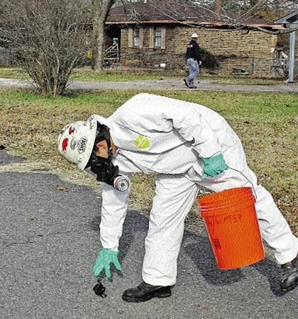 Специалисты собирают разбившихся дроздов в городке Биб (США, штат Арканзас).