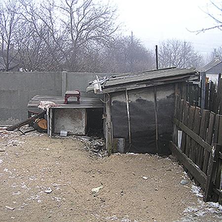 Брюлик жил в этой будке. Хозяева боялись посадить его на цепь.