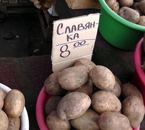Покращення життя продолжается. В Донецке картошка уже по 15 гривен. Фото: ostro.org.