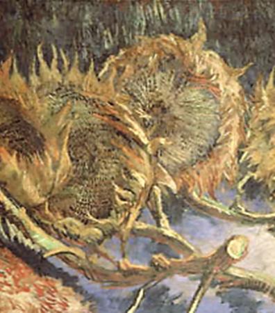 Увядающие подсолнухи. 1887 год.