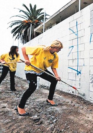 Трудовой день Пэрис Хилтон: 1. покрасила стену.
