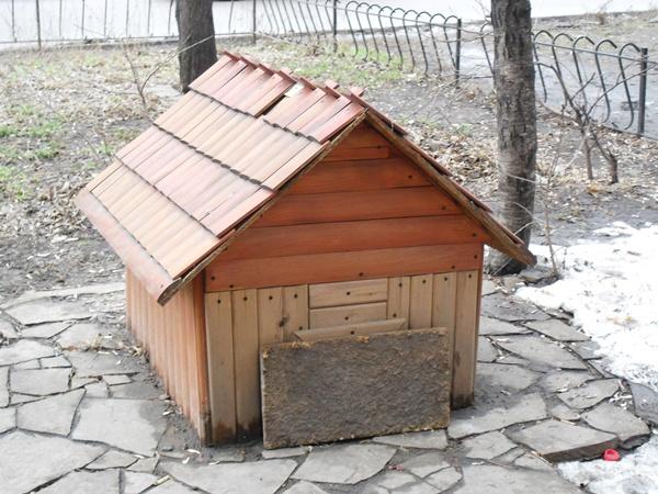 Когда потеплеет, Васька-Мордозвон устроит в домике летнюю резиденцию. Фото автора.