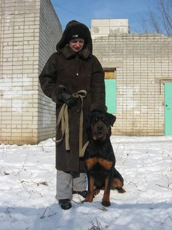 Элла Кулик уверяет: бродячих животных стало меньше еще после летней травли, в которой погибла ее прежняя собака. Фото автора.
