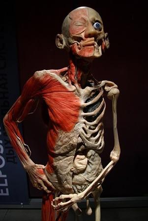 Китайцы завещали свои тела науке.Фото с сайта nasha.lv.