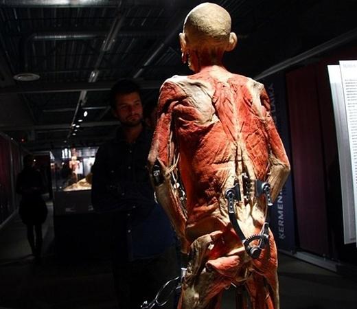 По всему свету выставку посетили более 28 миллионов человек. Фото с сайта nasha.lv.