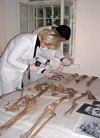 Кости из саркофага еще продолжают изучать. Фото предоставлено пресс-службой заповедника «София Киевская».