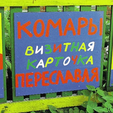 Турист, не знакомый с топонимикой Переславль-Залесского, может и впрямь решить, что комары да мухи - главная достопримечательность этого города! Прислала Ta-shamanka.
