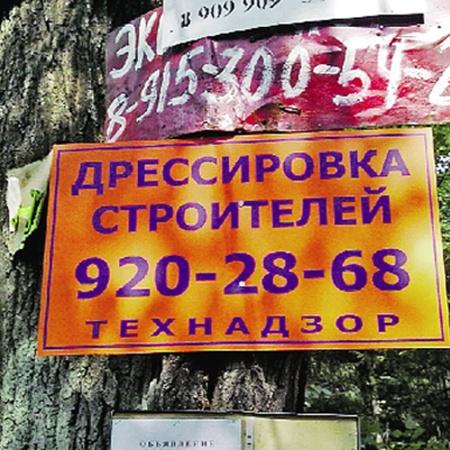 Дикие, зачастую не владеющие языком, паспортом и имуществом строители, по наблюдению Валерия Варкуля, водятся в лесах Одинцовского р-на Подмосковья, держатся вблизи дачных массивов, заходят на водопой в местные магазины...