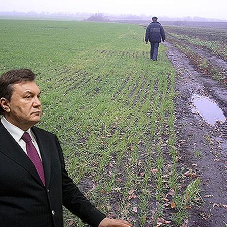 В Администрации президента планируют, что уже с 1 января 2012-го аграрии смогут свободно распоряжаться своими владениями. Фото УНИАН и Михаила МАРКИВА.