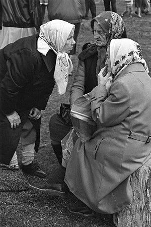 Никитична, Карловна, айда со мной в Белоруссию! Там к пенсии прибавка в виде картошки...Фото с сайта www.yuga.ru