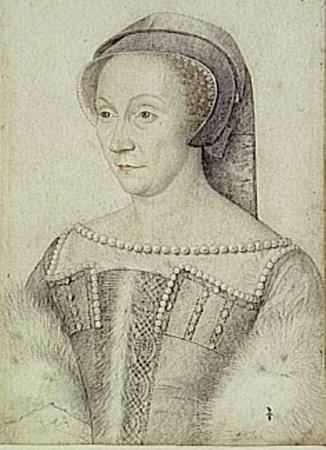 В Диану де Пуатье был влюблен король Франции, а современники считали ее бесподобной.