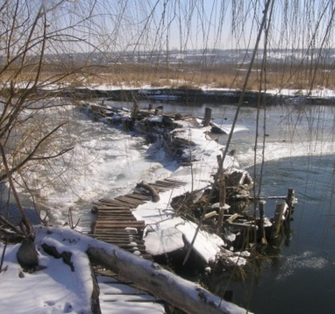 Из-за дамбы рыба по руслу реки не поднимается выше и не идет на нерест. Фото: Николай Рябченко
