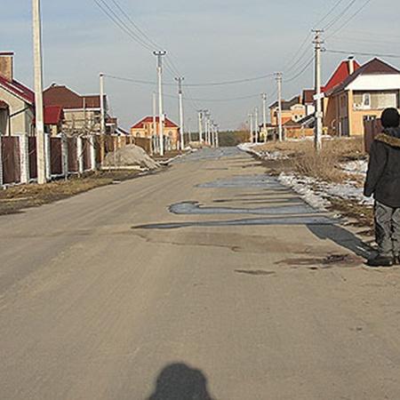 На улице в поселке Бобрица до сих пор видна кровь расстрелянных собак. Фото Александра КИТРАЛЯ.