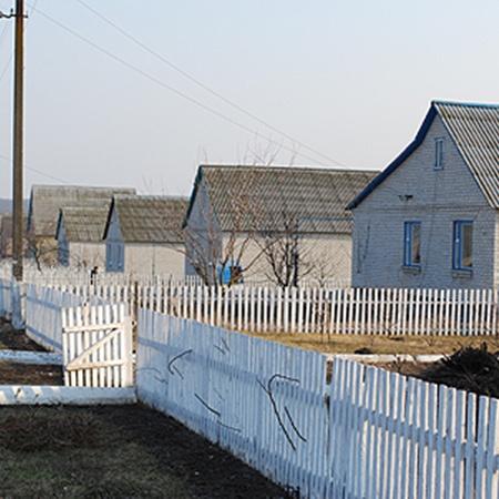 Целый поселок, состоящий из новых домов, построили на средства агрофирмы. Молодая семья может получить дом в этом поселке бесплатно. Нужно только отработать 10 лет.