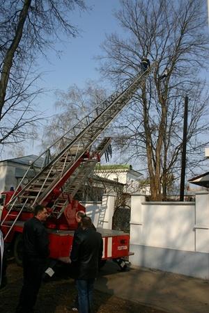 Фото ЦОС ГУ МЧСУ в Полтавской области.