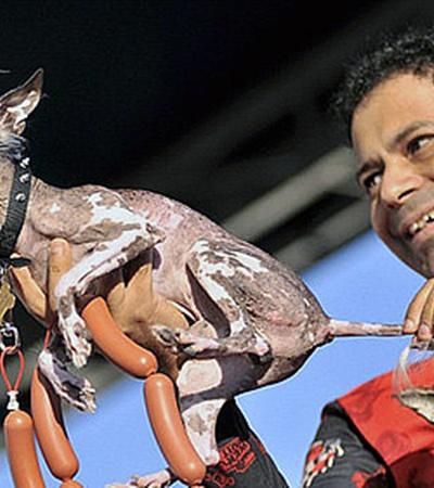 Некоторых призёров конкурса наградили сосисками.