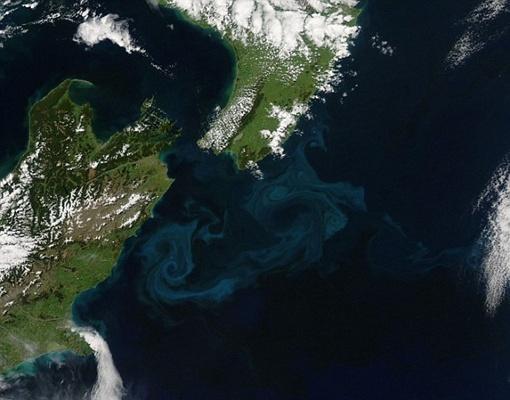 Столкновение холодного и горячего потоков воды у побережья Новой Зеландии. Фото NASA.