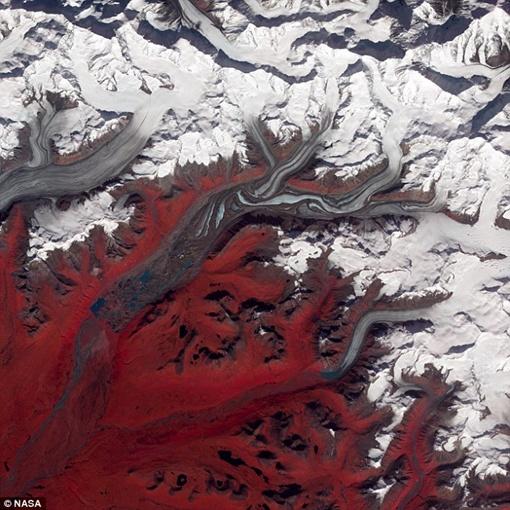 Фото Аляски - красным обозначена растительность. Фото NASA.