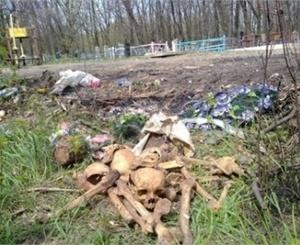На кладбище лежат остатки костей множества умерших. Фото: dnews.donetsk.ua.
