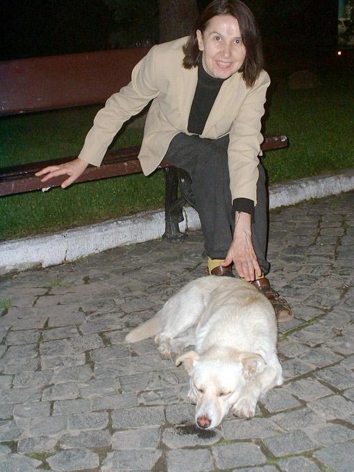 Галина Грищенкова не оставляет без внимания ни одну бездомную собаку.