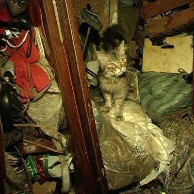 Женщина утверждает, что в квартире только нужные вещи. Фото: union.makeevka.com.