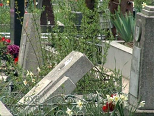 Живодеры не только мучили животных, но и крушили надгробия на городском кладбище.