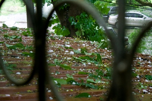 ФОТОРЕПОРТАЖ: Град в Крыму был размером с куриное яйцо и разбивал стекла машин фото 1
