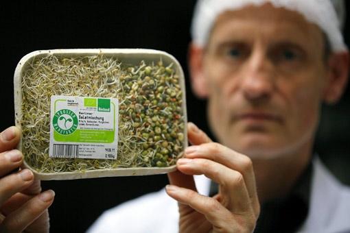 Ученые считают, что пророщенная соя стала опасной из-за удобрений.