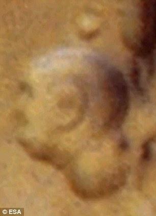 Марсианский барельеф индийского вождя. Фото: с сайта dailymail